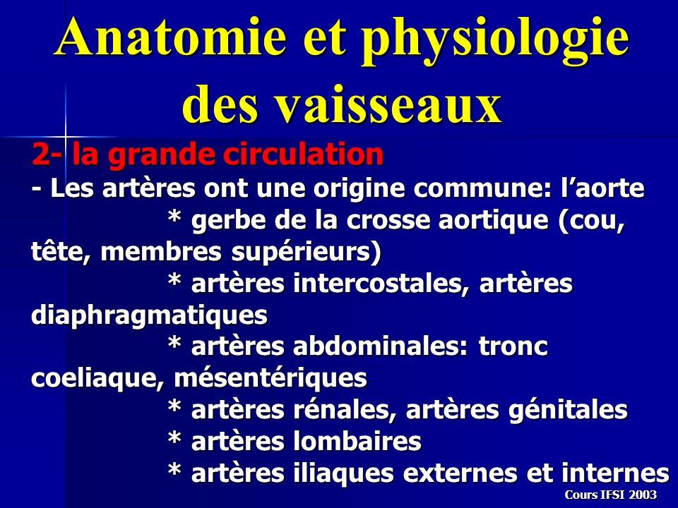 Anatomie et physiologie des vaisseaux 2- la grande circulation - Les artères ont une origine commune: laorte * gerbe de la crosse aortique (cou, tête,