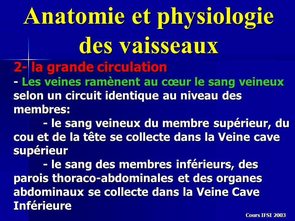 Anatomie et physiologie des vaisseaux 2- la grande circulation - Les veines ramènent au cœur le sang veineux selon un circuit identique au niveau des