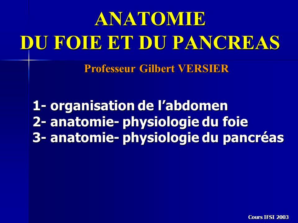 Cours IFSI 2003 ANATOMIE DU FOIE ET DU PANCREAS Professeur Gilbert VERSIER 1- organisation de labdomen 2- anatomie- physiologie du foie 3- anatomie- p