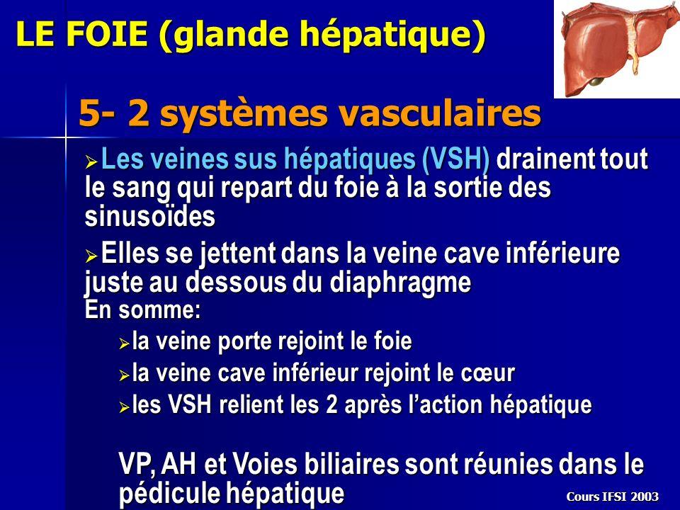 Cours IFSI 2003 5- 2 systèmes vasculaires LE FOIE (glande hépatique) Les veines sus hépatiques (VSH) drainent tout le sang qui repart du foie à la sor