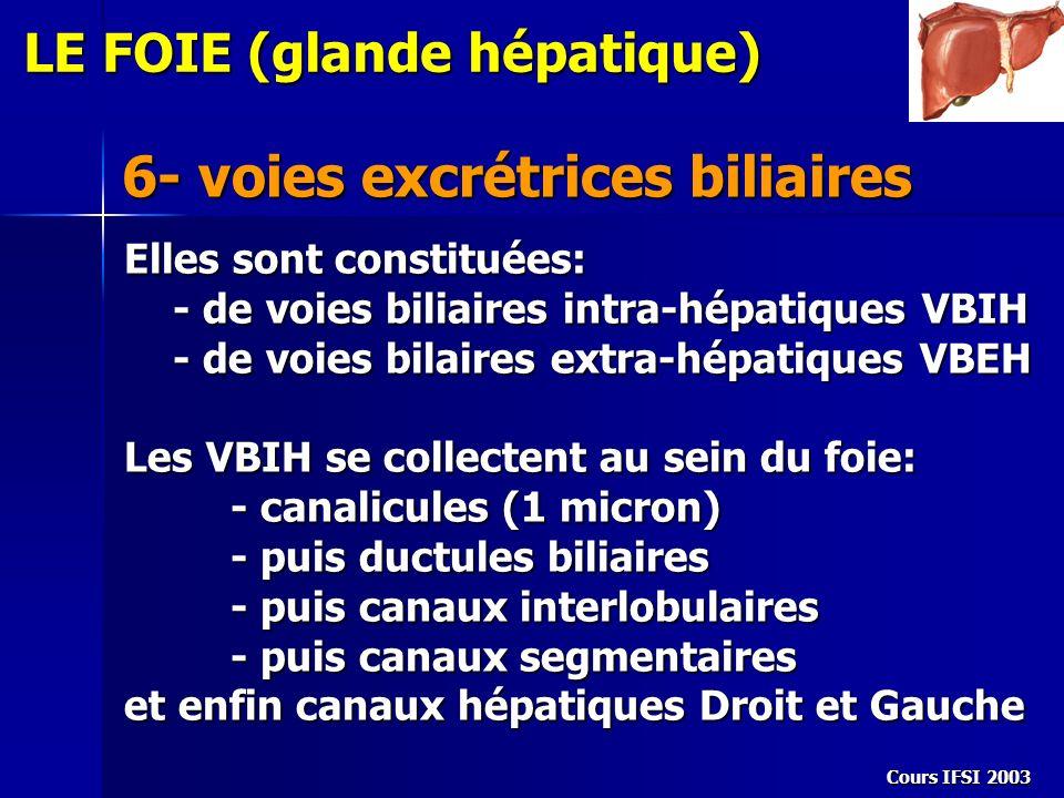 Cours IFSI 2003 6- voies excrétrices biliaires LE FOIE (glande hépatique) Elles sont constituées: - de voies biliaires intra-hépatiques VBIH - de voie