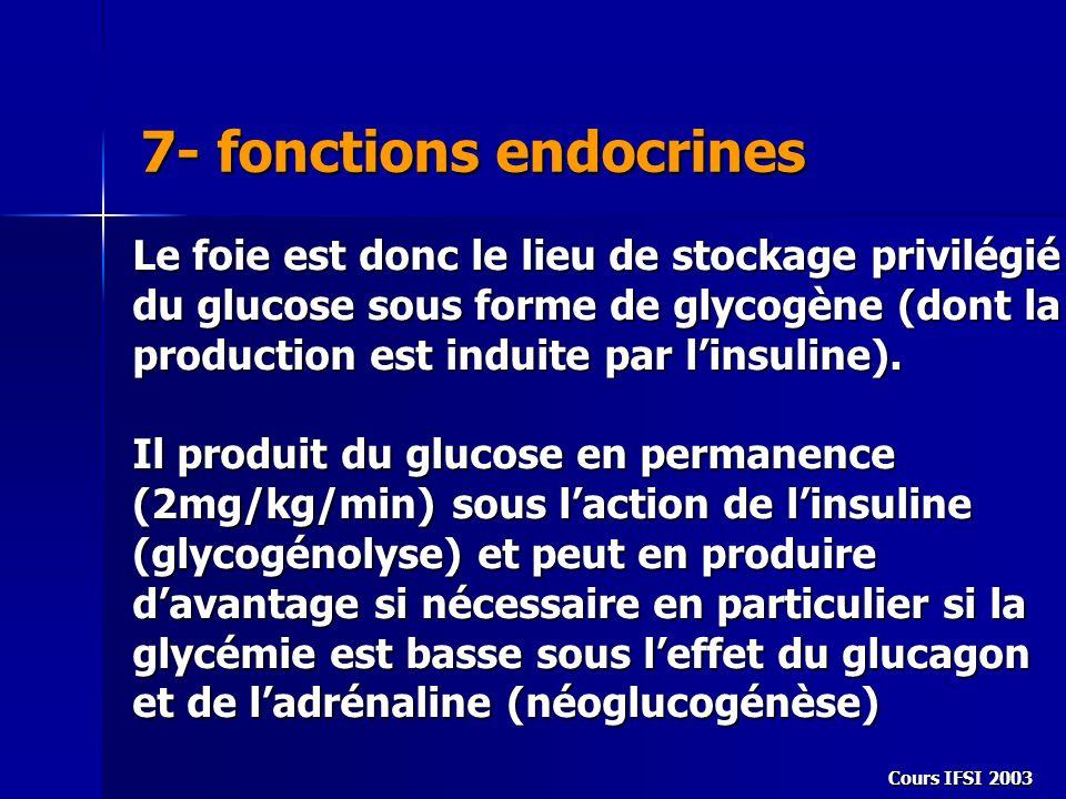 Cours IFSI 2003 7- fonctions endocrines Le foie est donc le lieu de stockage privilégié du glucose sous forme de glycogène (dont la production est ind