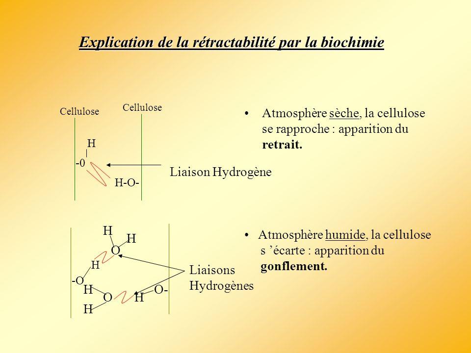 L anisotropie du bois Retrait Tangentiel Retrait Radial Retrait Axial