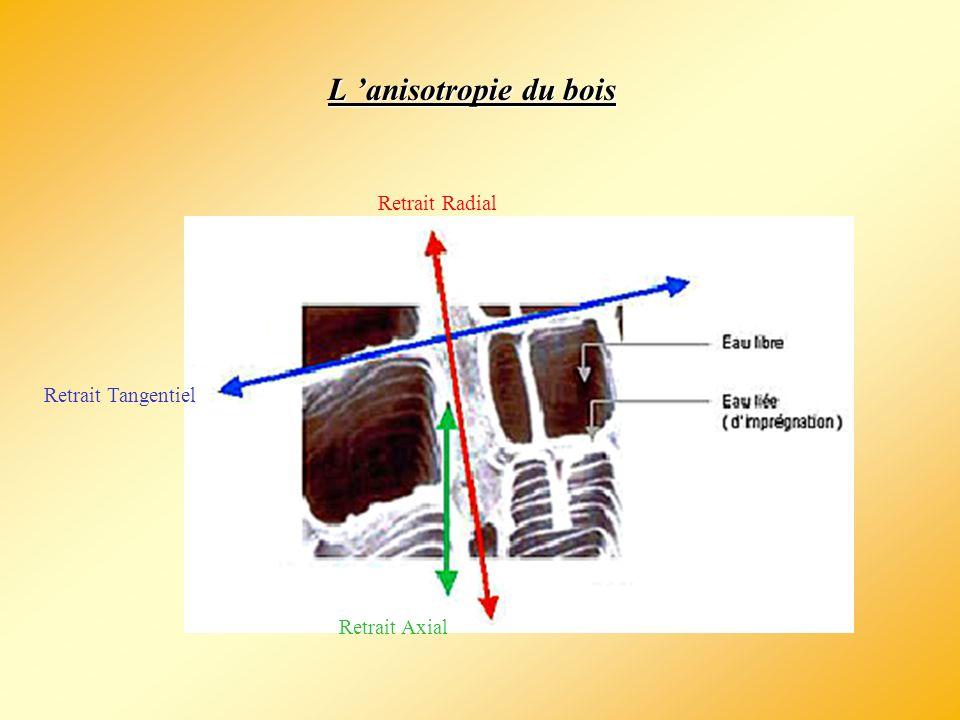 Conclusion Rétractabilité = déformation des cellules sous une certaine humidité Importance de savoir l évaluer Bien adapter le séchage au besoin