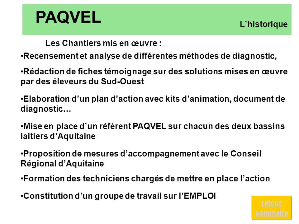 Constitution dun groupe de travail sur lEMPLOI PAQVEL Lhistorique Les Chantiers mis en œuvre : Recensement et analyse de différentes méthodes de diagn