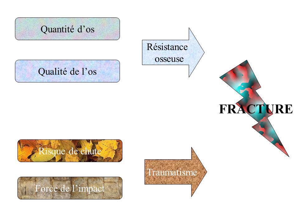 Quantité dos Qualité de los Risque de chute Force de limpact Résistance osseuse Traumatisme FRACTURE