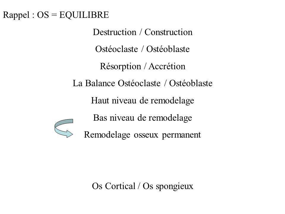 Rappel : OS = EQUILIBRE Destruction / Construction Ostéoclaste / Ostéoblaste Résorption / Accrétion La Balance Ostéoclaste / Ostéoblaste Haut niveau d