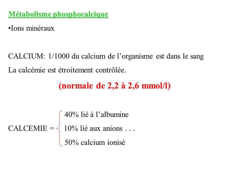 Métabolisme phosphocalcique Ions minéraux CALCIUM: 1/1000 du calcium de lorganisme est dans le sang La calcémie est étroitement contrôlée. (normale de