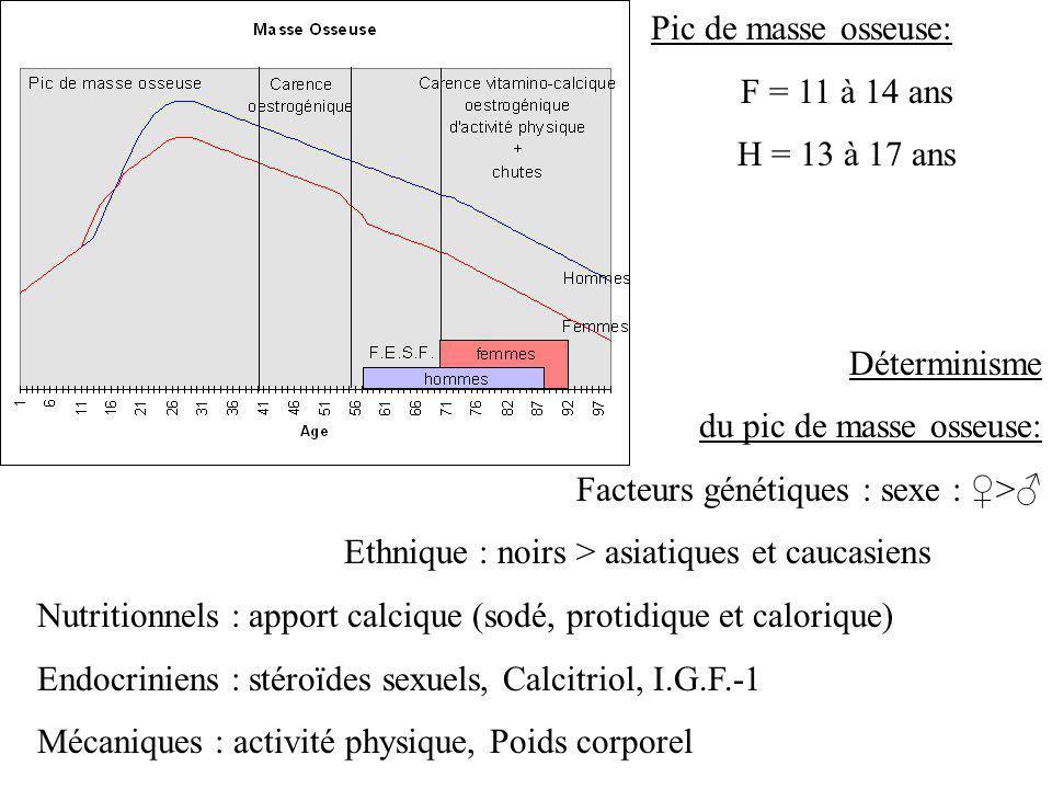 Pic de masse osseuse: F = 11 à 14 ans H = 13 à 17 ans Déterminisme du pic de masse osseuse: Facteurs génétiques : sexe : > Ethnique : noirs > asiatiqu