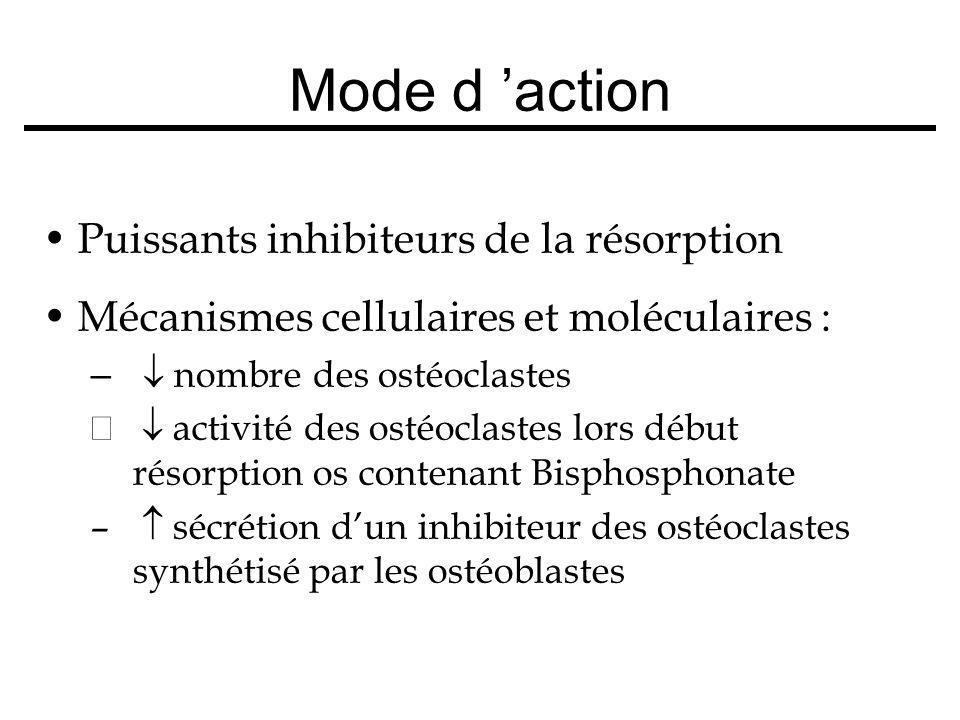 Puissants inhibiteurs de la résorption Mécanismes cellulaires et moléculaires : – nombre des ostéoclastes – activité des ostéoclastes lors début résor
