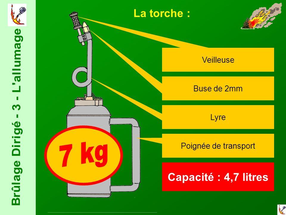La torche : Veilleuse Capacité : 4,7 litres Buse de 2mm Poignée de transport Lyre