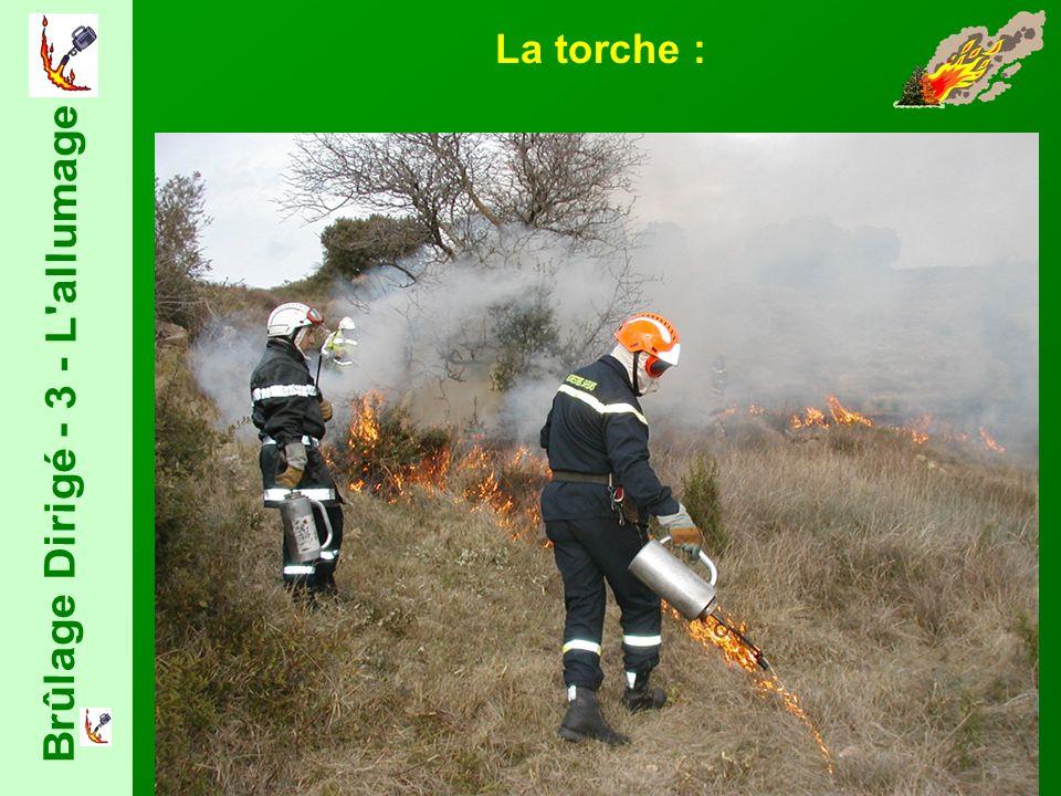 La torche :