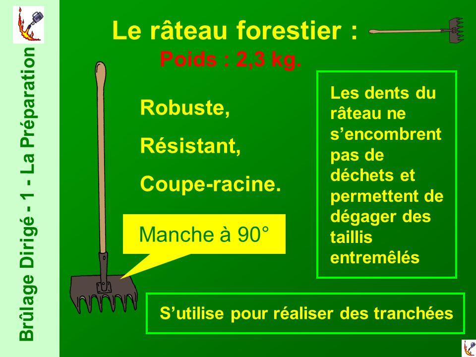Le râteau forestier : Robuste, Résistant, Coupe-racine.