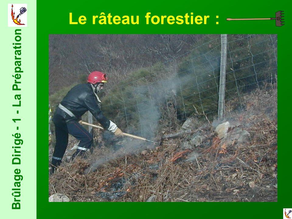 Le râteau forestier :