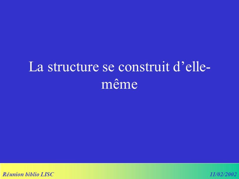 Réunion biblio LISC11/02/2002 La structure se construit delle- même