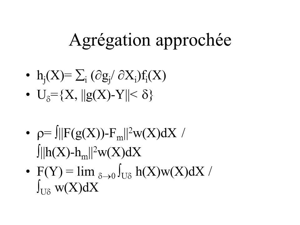 Agrégation approchée h j (X)= i ( g j / X i )f i (X) U ={X, ||g(X)-Y||< } = ||F(g(X))-F m || 2 w(X)dX / ||h(X)-h m || 2 w(X)dX F(Y) = lim 0 U h(X)w(X)