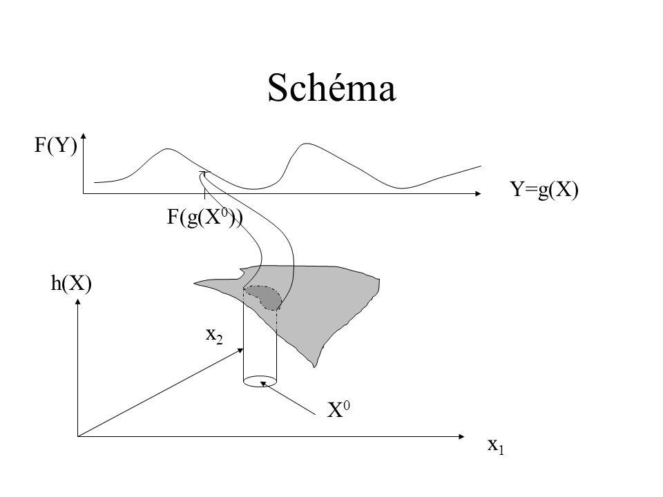 Schéma x1x1 x2x2 h(X) F(Y) Y=g(X) X0X0 F(g(X 0 ))