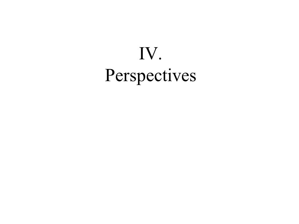 IV. Perspectives