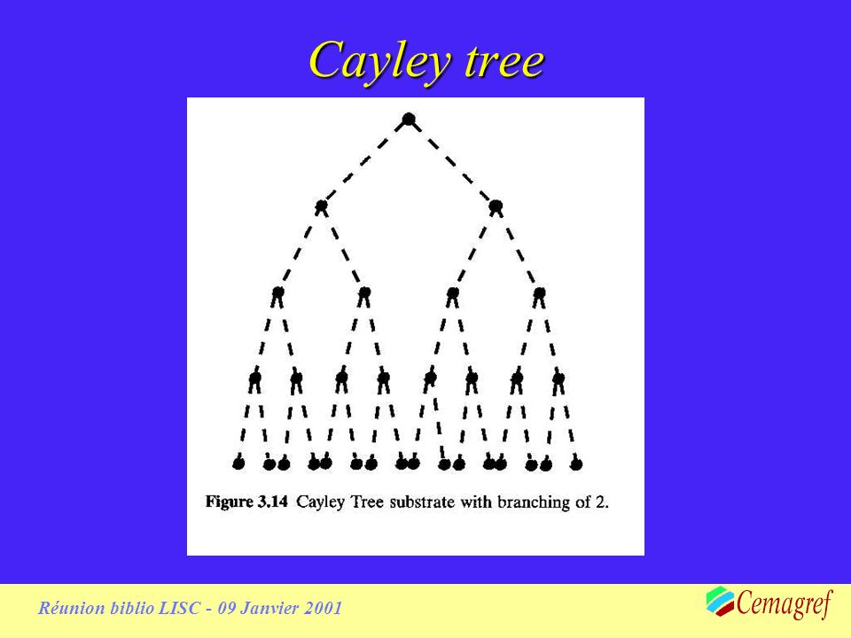 Réunion biblio LISC - 09 Janvier 2001 Cayley tree