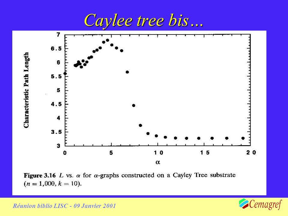 Réunion biblio LISC - 09 Janvier 2001 Caylee tree bis…
