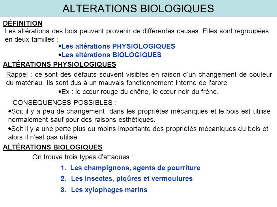 ALTERATIONS BIOLOGIQUES BUPESTRE