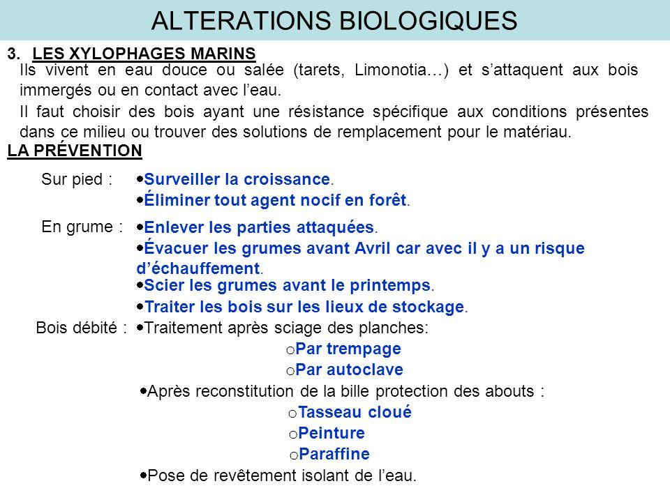 ALTERATIONS BIOLOGIQUES 3.LES XYLOPHAGES MARINS Ils vivent en eau douce ou salée (tarets, Limonotia…) et sattaquent aux bois immergés ou en contact av