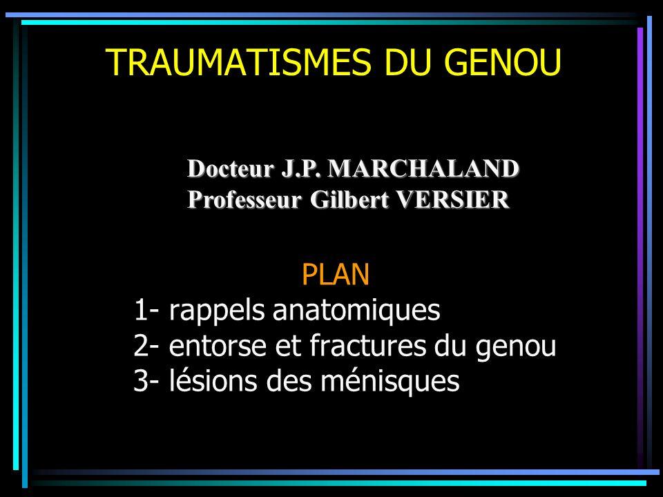 TRAUMATISMES DU GENOU PLAN 1- rappels anatomiques 2- entorse et fractures du genou 3- lésions des ménisques Docteur J.P. MARCHALAND Professeur Gilbert