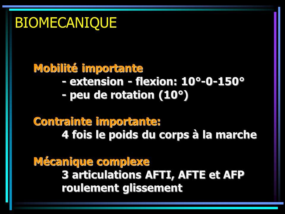BIOMECANIQUE Mobilité importante - extension - flexion: 10°-0-150° - peu de rotation (10°) Contrainte importante: 4 fois le poids du corps à la marche