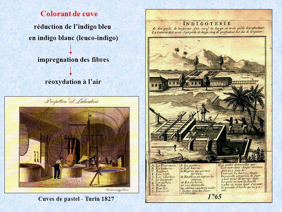 Colorant de cuve Cuves de pastel - Turin 1827 réduction de lindigo bleu en indigo blanc (leuco-indigo) impregnation des fibres réoxydation à lair 1765