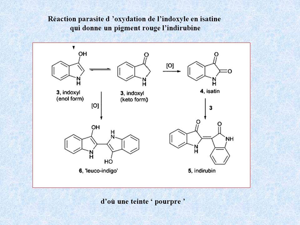 Réaction parasite d oxydation de lindoxyle en isatine qui donne un pigment rouge lindirubine doù une teinte pourpre