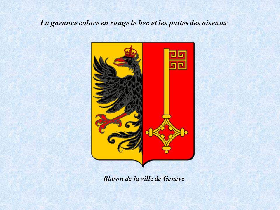 La garance colore en rouge le bec et les pattes des oiseaux Blason de la ville de Genève