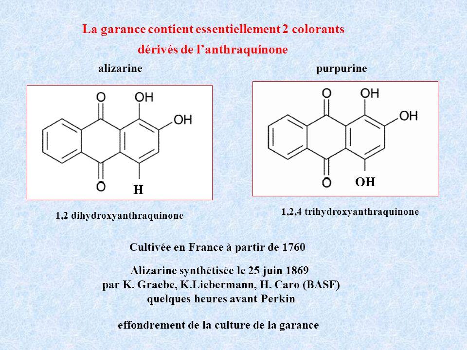 La garance contient essentiellement 2 colorants dérivés de lanthraquinone Alizarine synthétisée le 25 juin 1869 par K. Graebe, K.Liebermann, H. Caro (