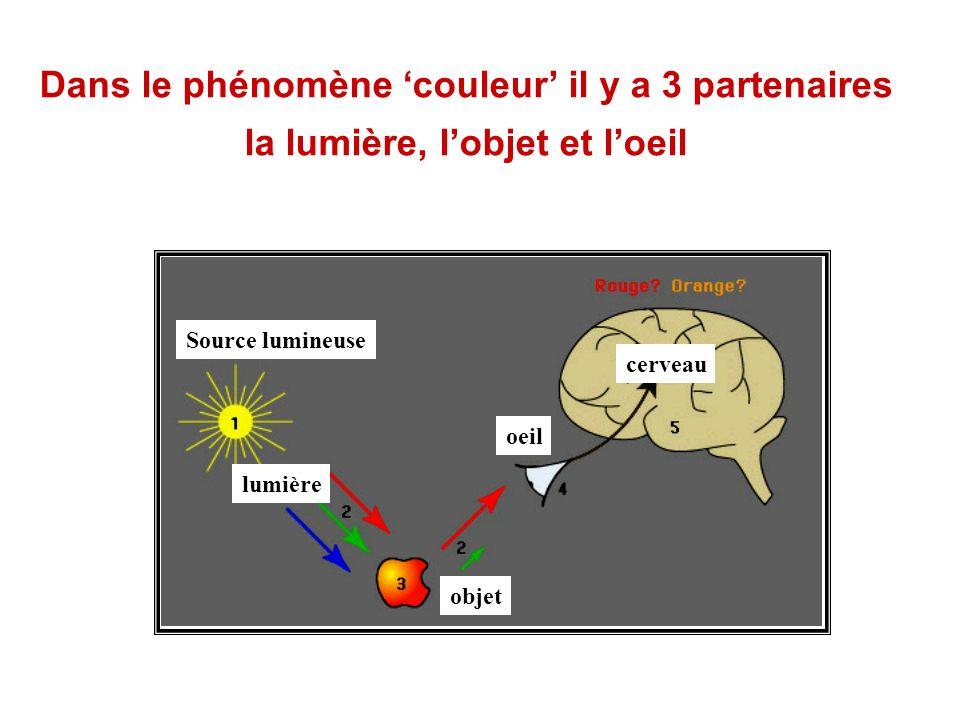 Source lumineuse lumière objet oeil cerveau Dans le phénomène couleur il y a 3 partenaires la lumière, lobjet et loeil