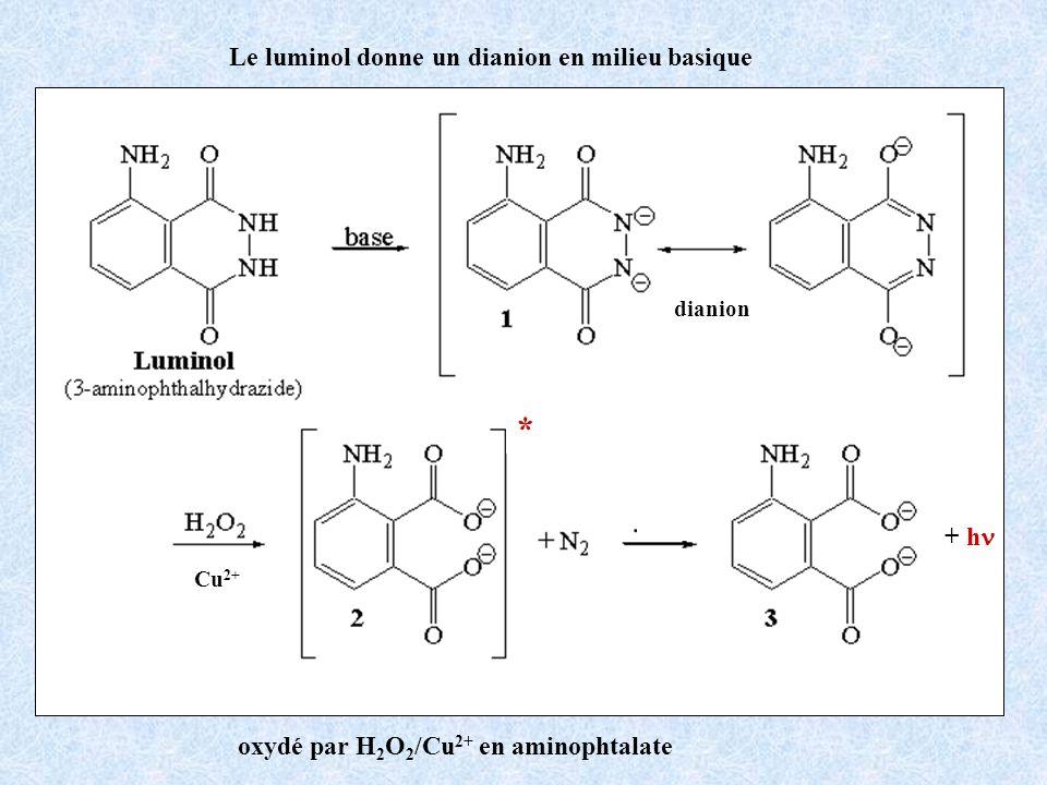 oxydé par H 2 O 2 /Cu 2+ en aminophtalate Le luminol donne un dianion en milieu basique dianion + h Cu 2+ *