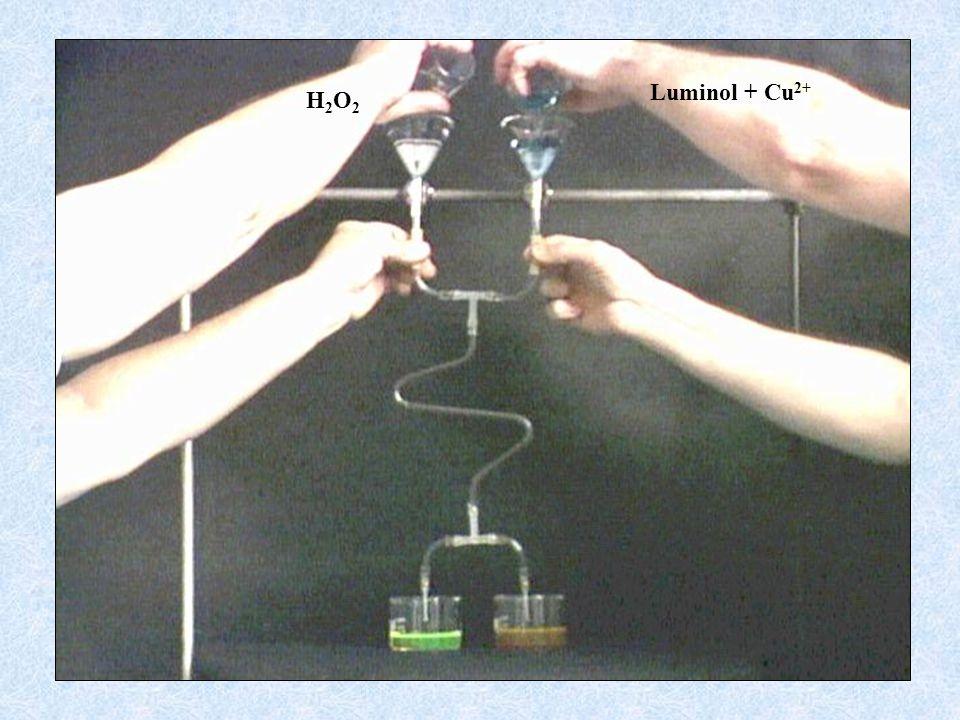 Luminol + Cu 2+ H2O2H2O2