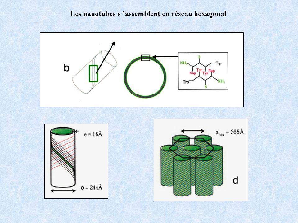 Les nanotubes s assemblent en réseau hexagonal
