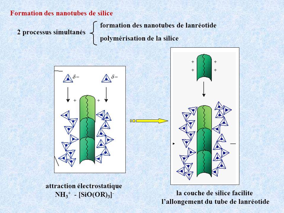 Formation des nanotubes de silice 2 processus simultanés formation des nanotubes de lanréotide polymérisation de la silice attraction électrostatique