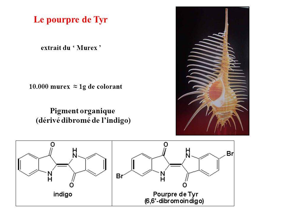 Le pourpre de Tyr extrait du Murex Pigment organique (dérivé dibromé de lindigo) 10.000 murex 1g de colorant