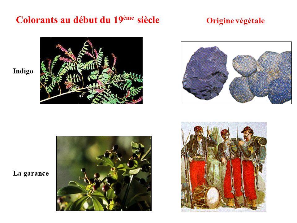 Colorants au début du 19 ème siècle Origine végétale La garance Indigo