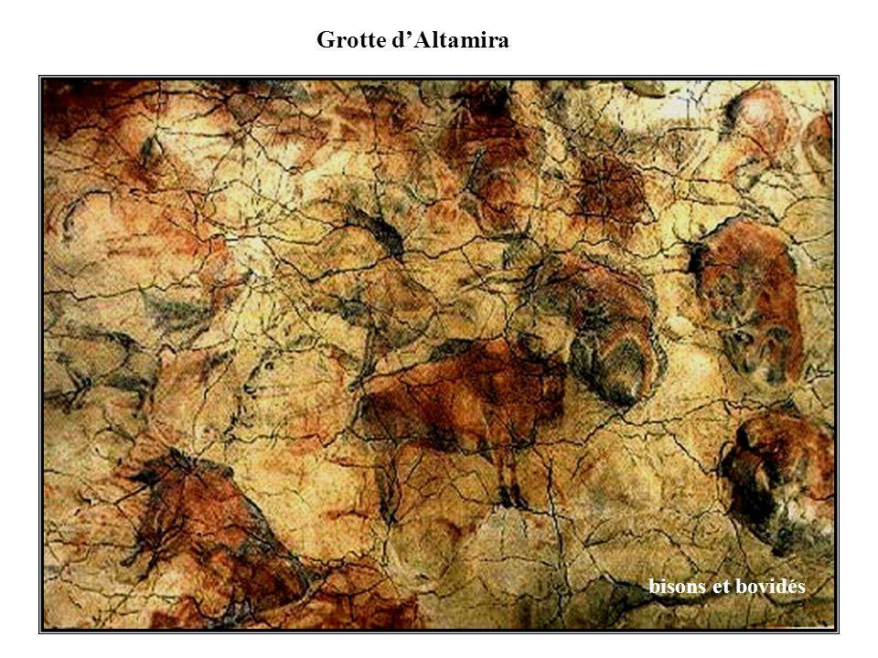 Grotte dAltamira bisons et bovidés