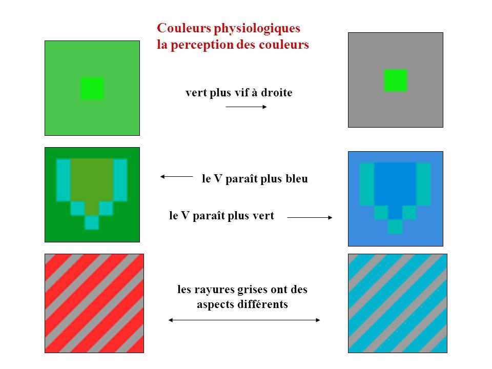 Couleurs physiologiques la perception des couleurs vert plus vif à droite le V paraît plus bleu le V paraît plus vert les rayures grises ont des aspec