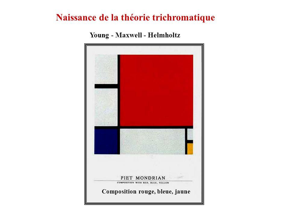 Naissance de la théorie trichromatique Young - Maxwell - Helmholtz Composition rouge, bleue, jaune