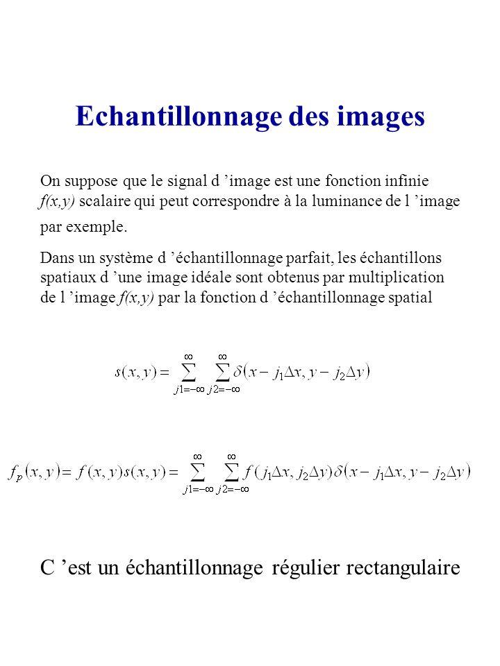 Echantillonnage des images On suppose que le signal d image est une fonction infinie f(x,y) scalaire qui peut correspondre à la luminance de l image p