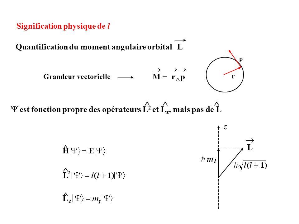 Signification physique de l Quantification du moment angulaire orbital L ^ r p z est fonction propre des opérateurs L 2 et L z, mais pas de L Grandeur