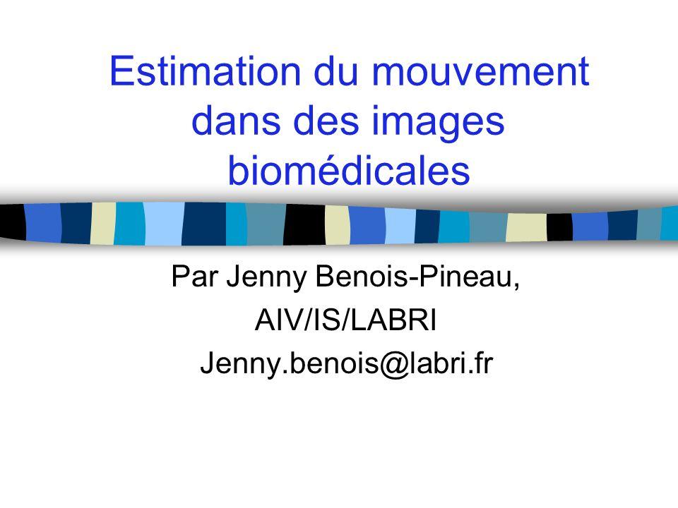 Estimation du mouvement dans des images biomédicales Par Jenny Benois-Pineau, AIV/IS/LABRI Jenny.benois@labri.fr