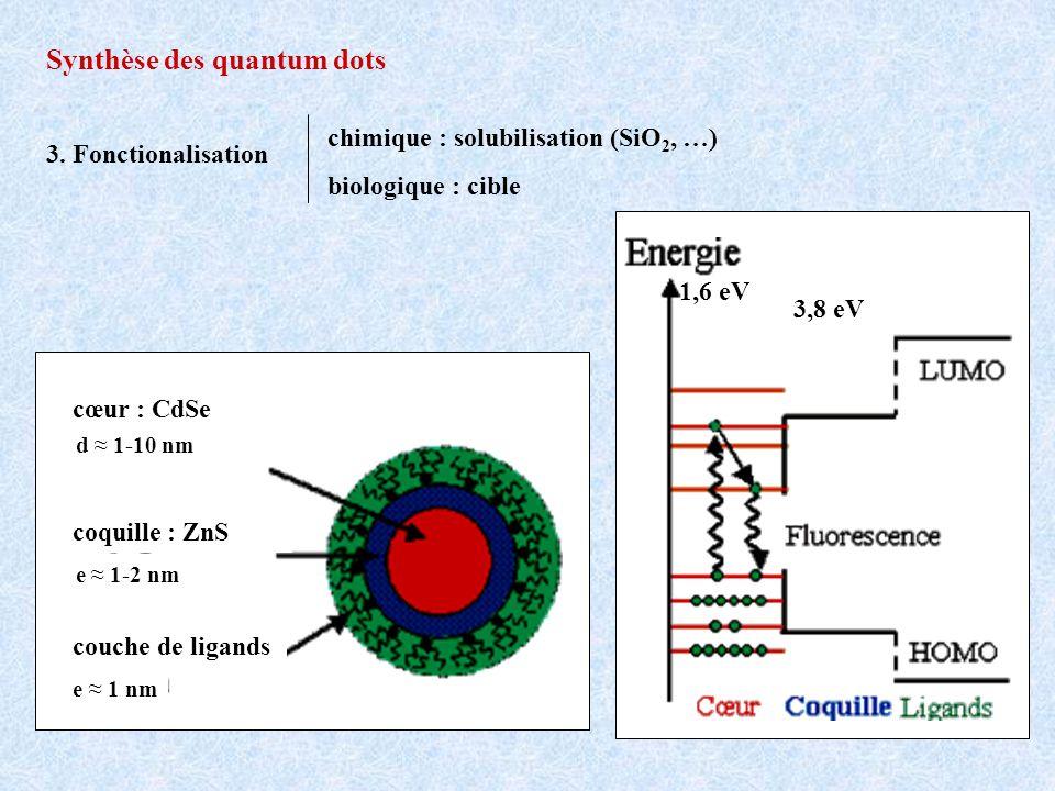 3,8 eV 1,6 eV cœur : CdSe coquille : ZnS couche de ligands e 1 nm e 1-2 nm d 1-10 nm Synthèse des quantum dots 3. Fonctionalisation chimique : solubil