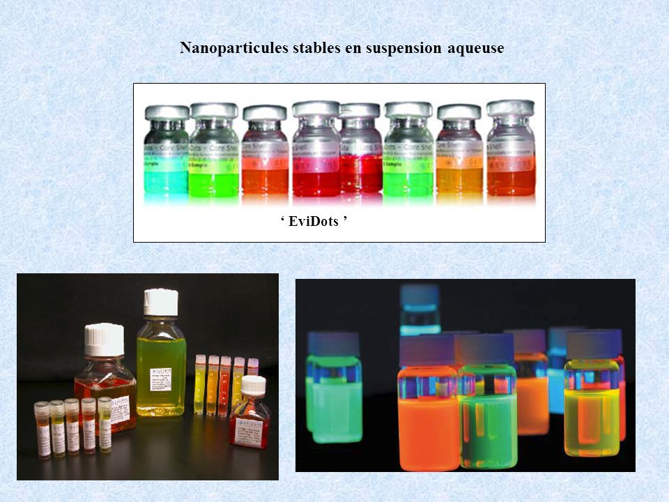 Nanoparticules stables en suspension aqueuse EviDots