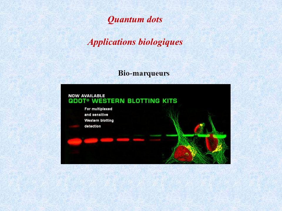 Quantum dots Applications biologiques Bio-marqueurs