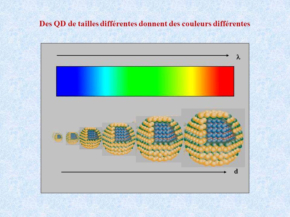 Des QD de tailles différentes donnent des couleurs différentes d