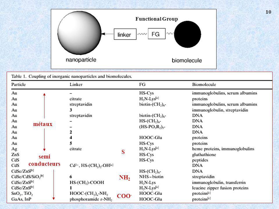 Functional Group semi conducteurs métaux S COO - NH 2 10